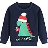 DHASIUE Kids Boys Christmas Sweatshirt Jumper Dinosaur Long...