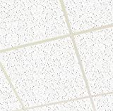 Suspended Ceiling FINE ND FISSURED Board Tiles 595 x 595 600x600...